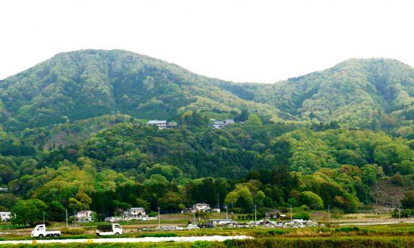 『雨引山』の画像