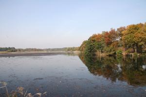 画像:大池の様子