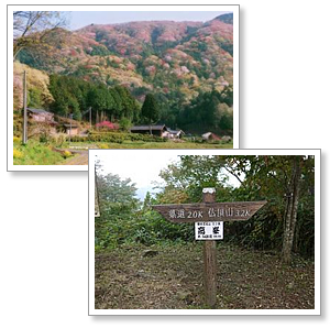 『桜川の山』の画像