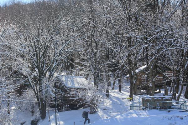 『筑波高原キャンプ場雪景色』の画像