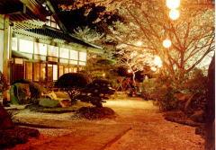 『岩瀬城夜』の画像