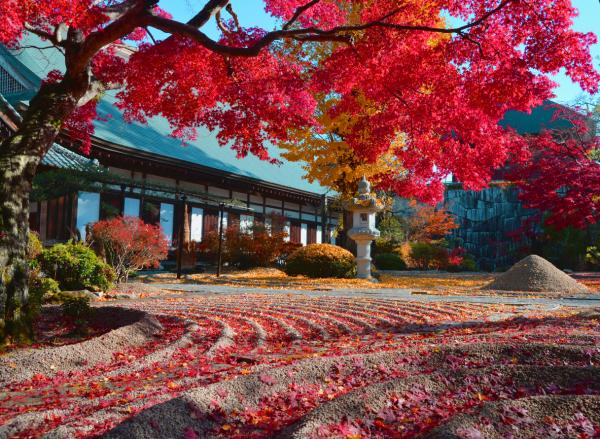 『月山寺』の画像