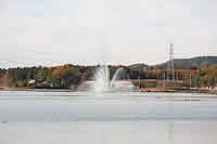 施設:上野沼やすらぎの里