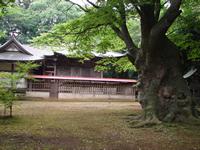 施設:八柱神社